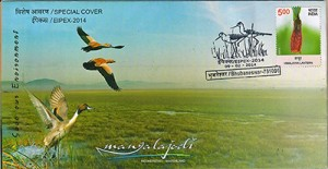 My Bird Shot Features On The Indian Postal Department Special Cover Page!